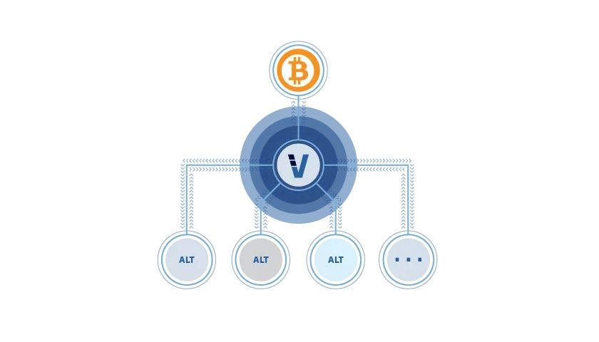 The VeriBlock blockchain